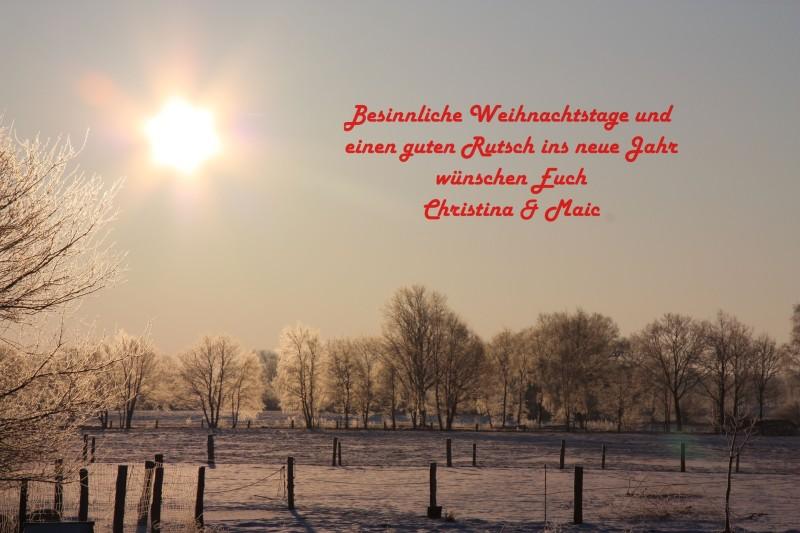 Frohe_Weihnachten_2012