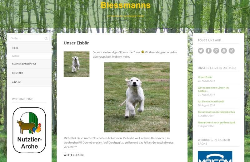 Blessmanns-neues-Theme-20140823